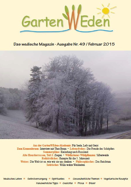 Ausgabe Nr. 49