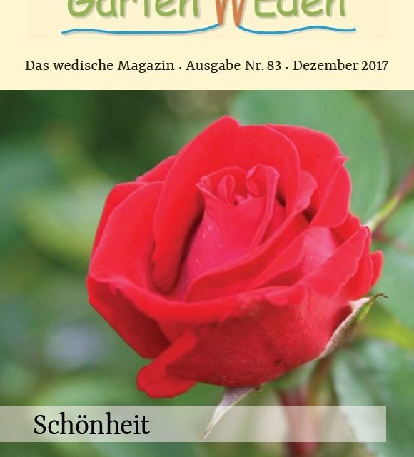 Ausgabe Nr. 83