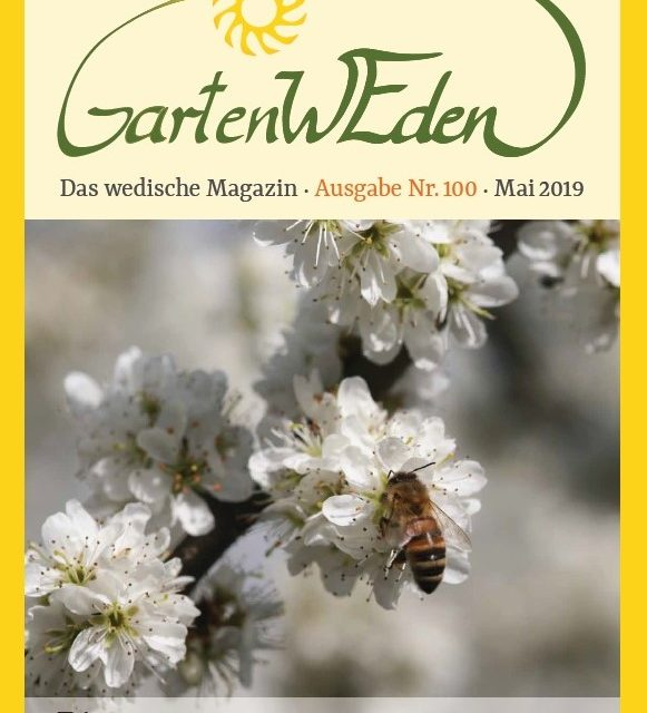 Ausgabe Nr. 100