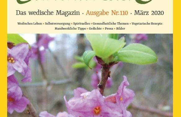 Ausgabe Nr. 110