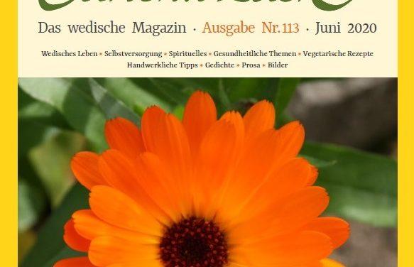 Ausgabe Nr. 113